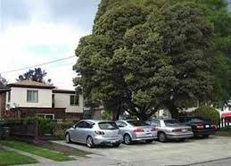 802 56th Street Oakland